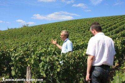 Sur la route des vins de loire le vignoble de menetou for Commune menetou salon