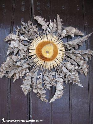 La Cardabelle Cardabelle-du-larzac