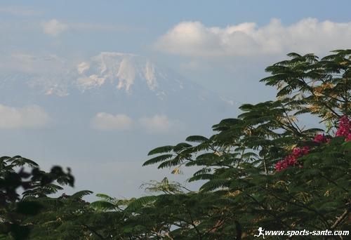 En route vers le sommet du Kilimandjaro : le col de Lawa Tower (4600m) (7/9)