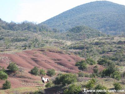 Visite du site pal�ontologique de M�rifons d�partement de l'H�rault