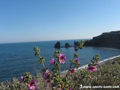 صور الطبيعة في فصل الربيع mer.jpg