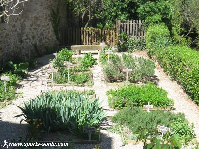 Médiéval, son église romane, ses jardins potagers traditionnels