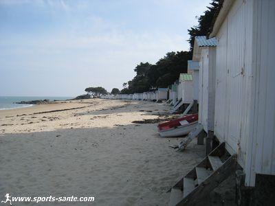 Balade insulaire sur l'Ile de Noirmoutier : � la d�couverte des plages depuis le Bois de la Chaise