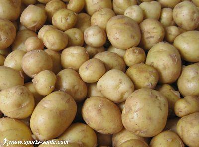La pomme de terre de noirmoutier - Ramassage pomme de terre ...