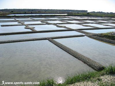 Visite aux paludiers des marais salants de guérande en pays de loire