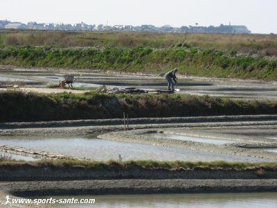 Visite aux paludiers des marais salants de Gu�rande en Pays de Loire
