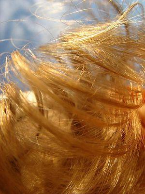 Un adolescent conçoit un panneau solaire à partir de cheveux